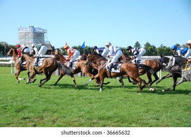DEAUVILLE, FRANCE - AUGUST 25: horse races at the famous Deauville race track on August 25th, 2009