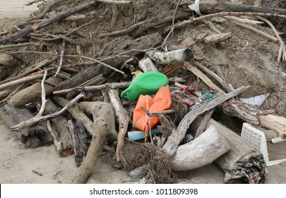 debris and dry branches with garbage and plastic pieces gathered on the beach by the sea