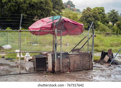 Dec 2017, Honiara, Solomon Islands, a betel nut stall is empty and deserted because of the weather on a rainy day
