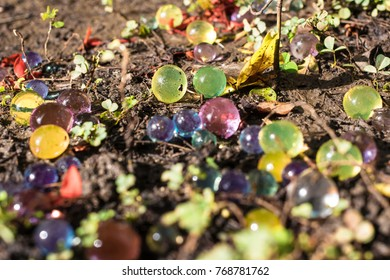 Dec2017, Honiara, Solomon islands, colorful hygroscopic bubbles lie between leaves and flower petals in the mud , nature and man made together