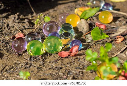 Dec2017, Honiara, Solomon Islands,colored hygroscopic bubbles lie in the mud next to leaves and flower petals