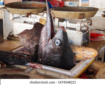 A decapitated sailfish head on display at a fish stall in the Old Deira Fish Souk