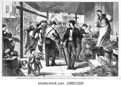 Decayed Fruit. Inspection of fruit in New York markets, by order of the Board of Health. Woodcut, Sept. 13, 1873