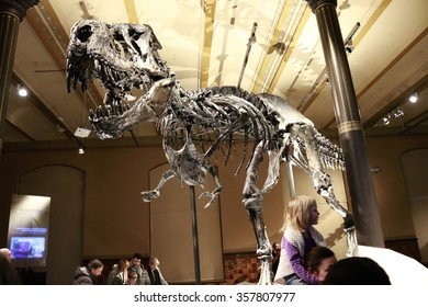 Tyrannus saurus rex images stock photos vectors shutterstock december 2015 berlin the skeleton of the tyrannus saurus rex tristan otto thecheapjerseys Image collections