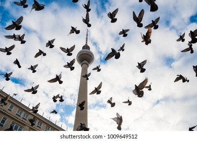December 29, 2017 Berlin Germany - Famous TV tower at Alexanderplatz and flying doves at dramatic sky