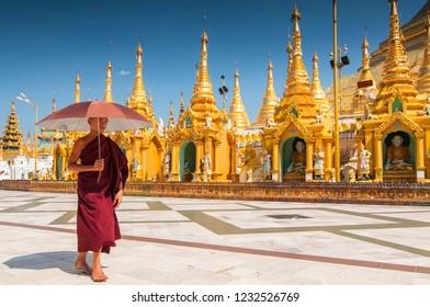 December 3, 2015. Novice Buddhist monk walking around the Shwedagon Paya the most sacred golden buddhist pagoda in Yangon, Myanmar.
