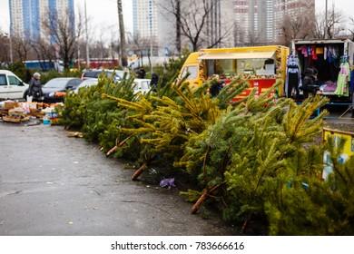 december christmas trees on sale in columbia road flower market in east