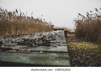 December weekend on Siemianowka Lake