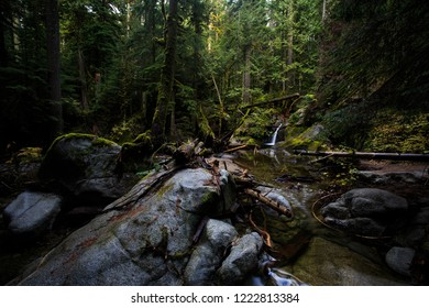 Deception Creek Flowing Through The Forest In Washington State