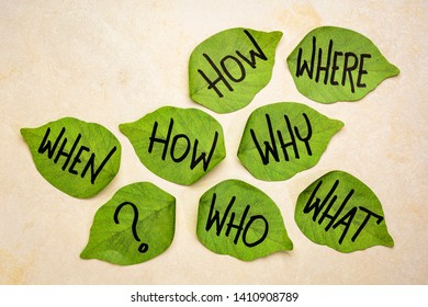 decision making or brainstorming questions - handwriting on green leaf shaped sticky notes against handmade texturedpaper