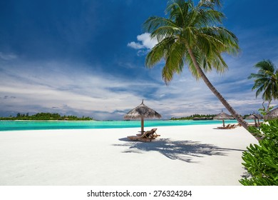 Deck chairs under palm trees on an empty tropical beach of Maldives
