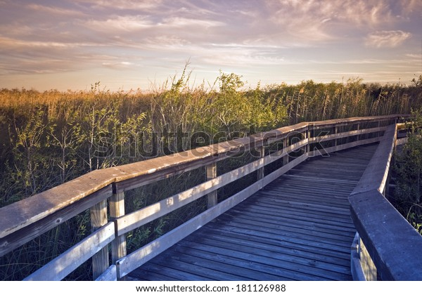 Deck in Everglades National Park, Florida.