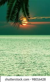 Decline in tropics against the sea