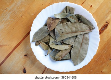 Decoction of the leaves. Graviola - natural medicine.
