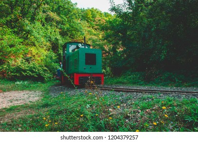 decommissioned rail in a forest