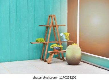 Decorate room corner / decorate in a house with plants in pot and blue wall