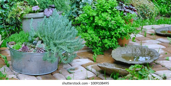 Decorated Backyard Garden Corner And Patio Brick Flooring After Rain. Modern Floral Landscaping Design.