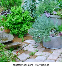 Decorated Backyard Garden Corner And Patio Brick Flooring After Rain. Modern Floral Landscaping Design.