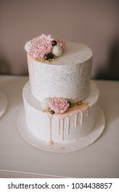 Decorated cakes and cakepops