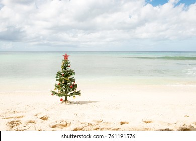 Decorated Christmas tree standing by the sea shore under cloudy skies