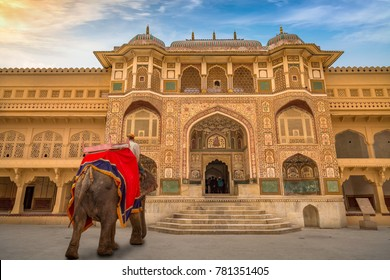 Decorated elephant in front of the intricately carved gate of Amber Fort Palace Jaipur at sunrise.