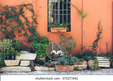 Decorated flower patio in summer