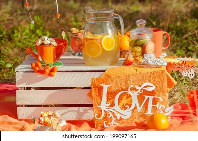 Decorated picnic with oranges and lemonade in the summer garden