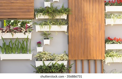 Decorated wall vertical garden
