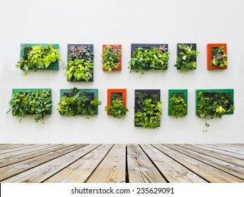 decorated wall vertical garden Idea in the city