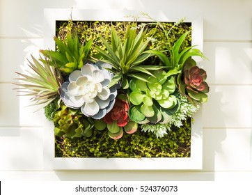 Decorated wall vertical garden idea in the city, Background.