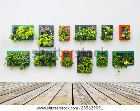 Decorated Wall Vertical Garden Idea City Stock Photo (Edit Now ...