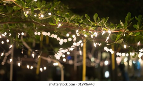 decoration light christmas celebration hanging on tree, abstract image blurred defocused background