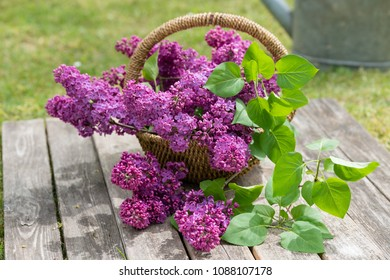 decoration with lilac