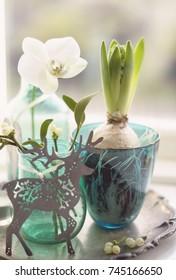 Decoration with mistletoe and hyacinth