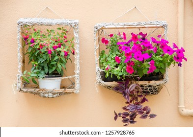 Decoration. Two vases of pink flowers (bellflowers and surfinie) hanging from the outside wall of a building in a wooden frame covered with string.
