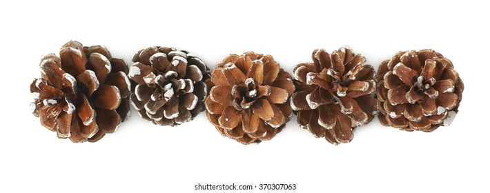 Decorational pine cones isolated