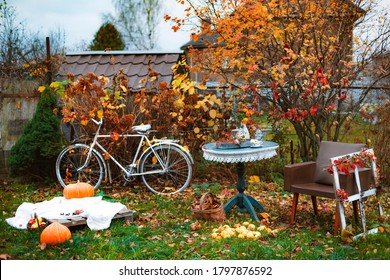 decorations in the backyard for relaxing in the autumn garden. Relaxing atmosphere in the backyard and on the terrace