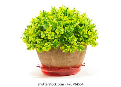 Decorative artificial tree in flowerpot isolated on white background.