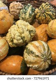 Decorative autumn squash in a basket