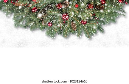 decorative background with fir branches