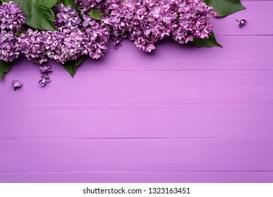 Decorative border of lilac flowers. Spring background with copy space for text