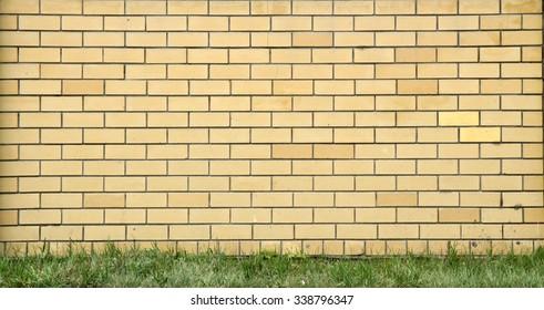 Green Bush Old White Brick Wall Stock Photo (Safe to Use) 435230509 ...