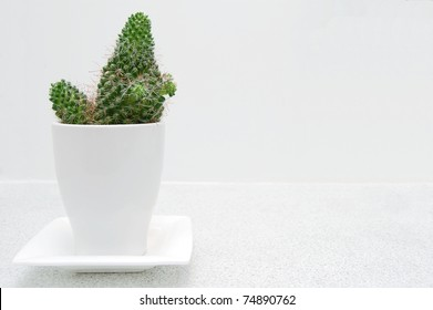 A Decorative Cactus in a White Pot on a Bathroom Counter with Room for Text