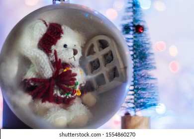 Decorative Christmas ball with Teddy bear inside isolated on colorful background. Festive Christmas background, Christmas and New year spirit.