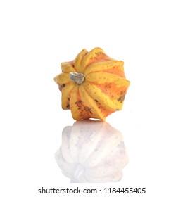 Decorative Colorful Mini Pumpkin on white background