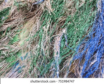 Decorative Dry colorful straw grass background