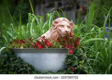 Decorative figure in the garden / lion