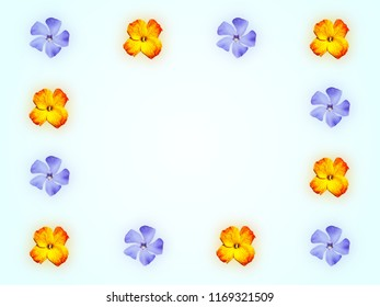 Decorative floral frame with yellow red flower of wallflower and blue flower of periwinkle on light green background