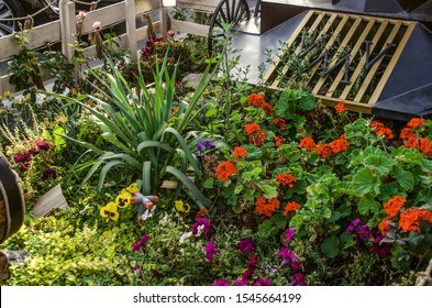 Decorative flower bed with the latest autumn flowers of red pelargonium, pansies, petunias and Yucca palm on the sidewalk