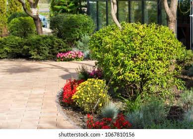 Decorative flowerbeds with flowers and bushes in the city's landscape park